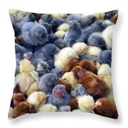 For Sale Baby Chicks Throw Pillow