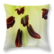For The Love Of Lilies 1 Throw Pillow