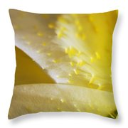 For The Love Of Lilies 4 Throw Pillow