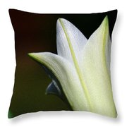 For The Love Of Lilies 9 Throw Pillow