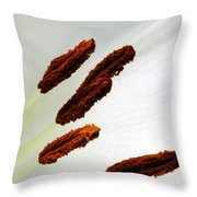 For The Love Of Lilies 7 Throw Pillow