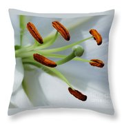 For The Love Of Lilies 8 Throw Pillow