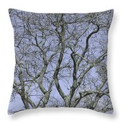 For The Love Of Trees - 2  Throw Pillow