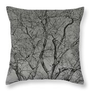 For The Love Of Trees - 2 - Monochrome  Throw Pillow