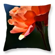 For You Dear  Throw Pillow