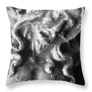 For You He Was Tortured #2 Throw Pillow