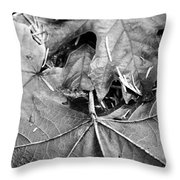 Foraged Insights Throw Pillow