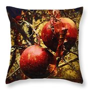 Forbidden Fruit Throw Pillow