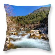 Force Of Beauty Throw Pillow