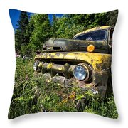 Fords View Throw Pillow