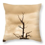 Foreboding Clouds Over Ghost Tree 1 Throw Pillow