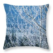 Foreground Frost Throw Pillow