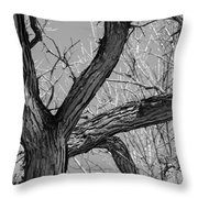 Forest #2 Throw Pillow