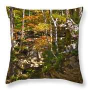 Forest Above The Cave Throw Pillow