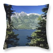 Forest And Lakes Lanin National Park Throw Pillow