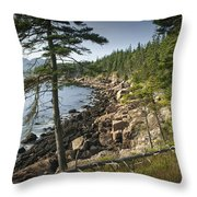 Forest And Rocky Shore In Acadia National Park Throw Pillow