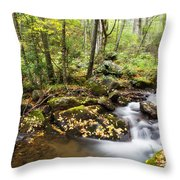 Forest And Stream Throw Pillow