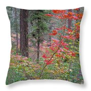 Forest Autumn Throw Pillow