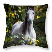 Forest Beauty Throw Pillow