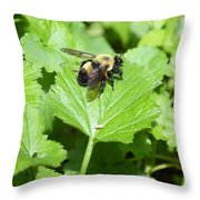 Forest Bee 7260 Throw Pillow