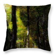 Forest Bench Throw Pillow
