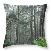 Forest Bluff Throw Pillow