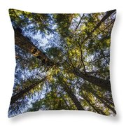 Forest Canopy Throw Pillow