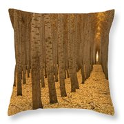 Forest Cathedral - One Throw Pillow