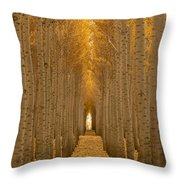 Forest Cathedral - Two Throw Pillow