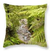 Forest Creek In Lush Rainforest Jungle Of Nz Throw Pillow