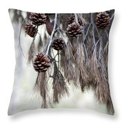 forest decoration - A pine tree give us a natural autumn decoration  Throw Pillow