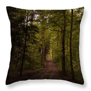 Forest Entry Throw Pillow