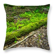 Forest Floor Gosnell Big Woods Throw Pillow