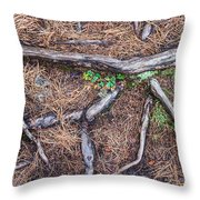 Forest Floor With Tree Roots Throw Pillow