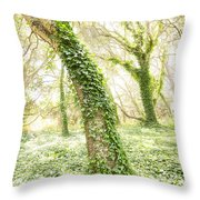 Forest Glow - The Magical Trees Of The Los Osos Oak Reserve Throw Pillow