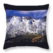 Forest Gold Throw Pillow