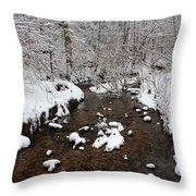 Forest Hill Creek Throw Pillow