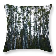 Forest II Throw Pillow