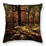 Forest Illuminated Throw Pillow by Linda Unger