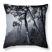 Forest In The Fog Throw Pillow