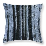 Forest In Winter Throw Pillow by Bernard Jaubert