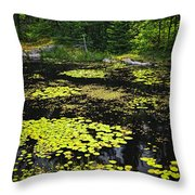 Forest Lake With Lily Pads Throw Pillow