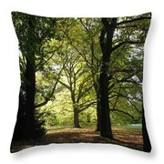 Forest Light And Shadows Throw Pillow