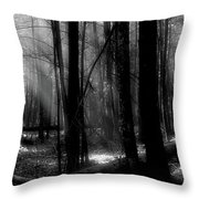 Forest Light In Black And White Throw Pillow