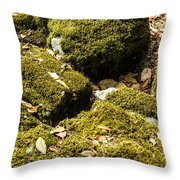 Forest Moss Throw Pillow