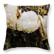 Forest Mushroom Trio Throw Pillow