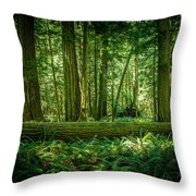 Forest Of Cathedral Grove Collection 7 Throw Pillow