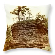 Forest On A Rock Throw Pillow