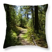 Forest Path In Spokane 2014 Throw Pillow