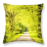 Forest Path In Spring With Bright Green Trees Throw Pillow